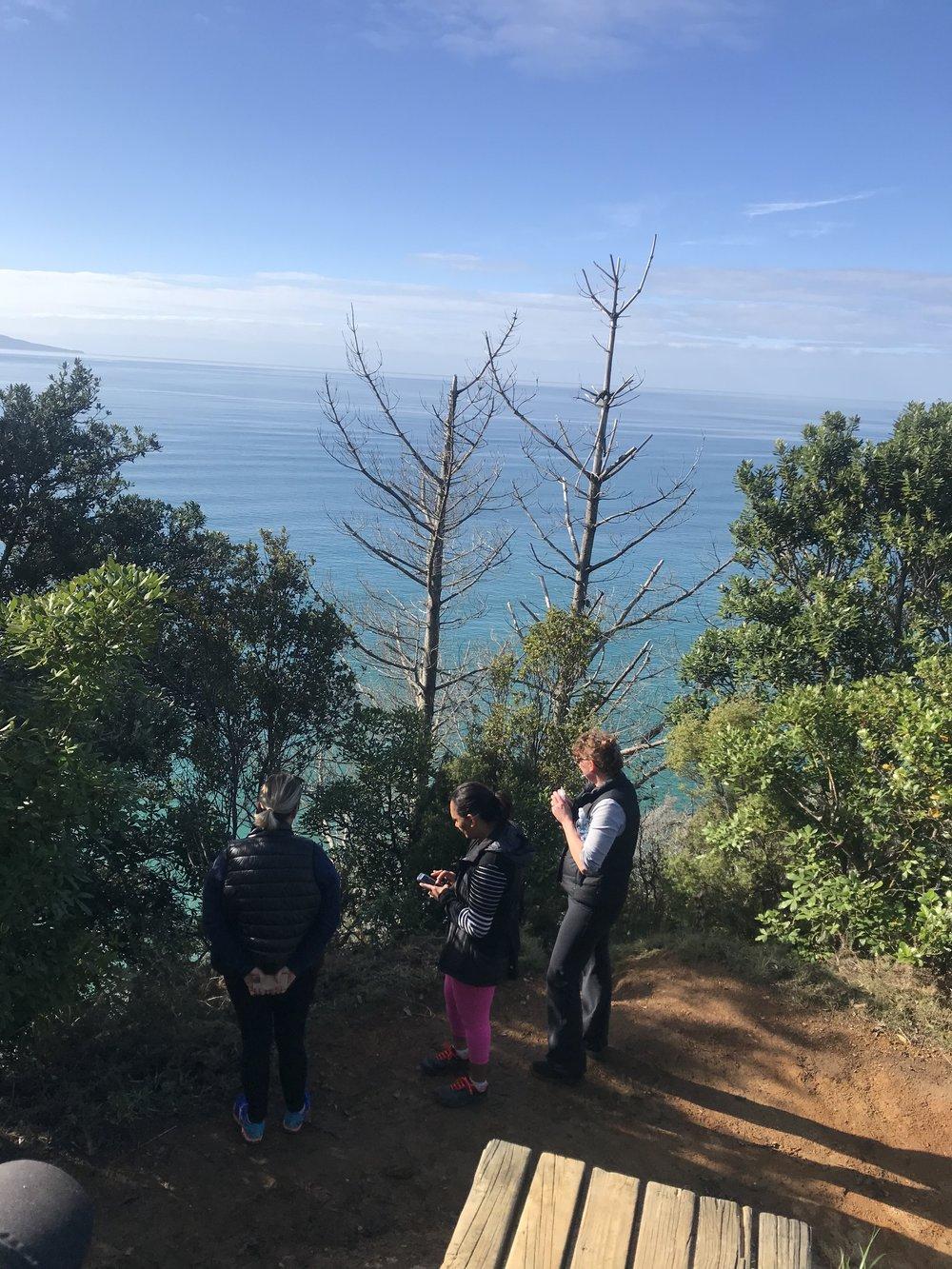 Views from the Orokaway Bay Hike near Waihi Beach.