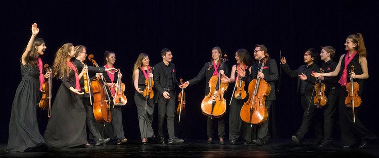 violinis.jpg