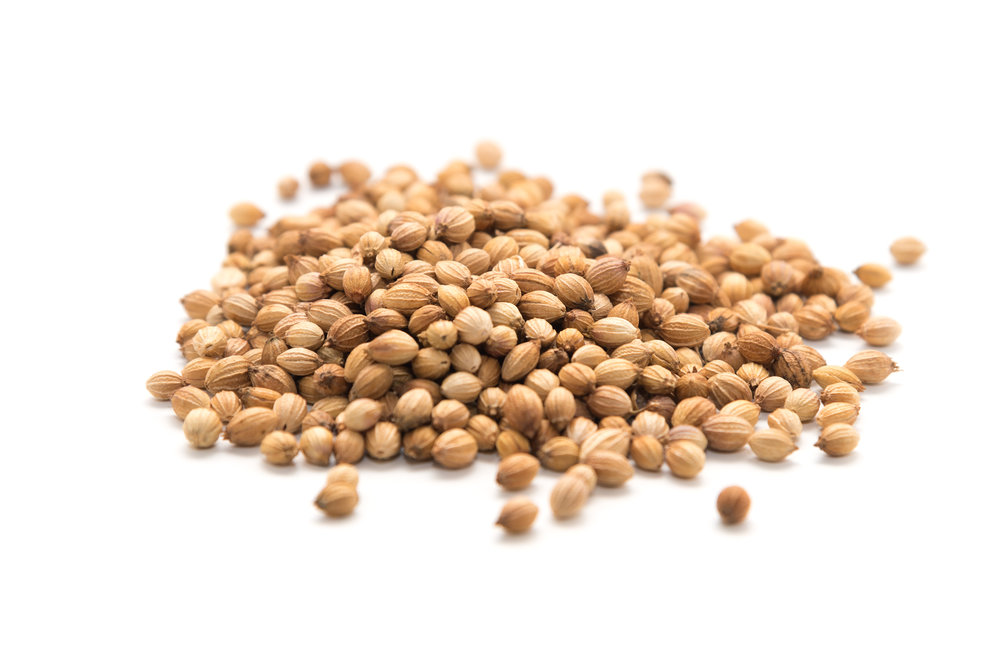 Coriander Seeds - Our coriander is bred specifically for its seeds. After steeping it overnight you can taste the woody notes of thyme and the floral citrus flavour of linalool.