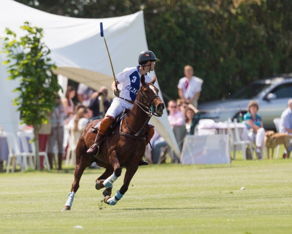 The Atlantic Cup Charity Polo Tournament - All players will have priority access to the Atlantic Cup where Harvard, Yale Cambridge and Oxford will battle it out, showcasing the pinnacle of University Polo. Players who choose to continue to play may have the opportunity to join the University alumni exhibition match in 2019.