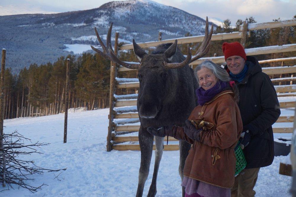 Foto: Glittersjå Fjellgård - Helge og Hege Nordskar sammen med selveste Kongen.