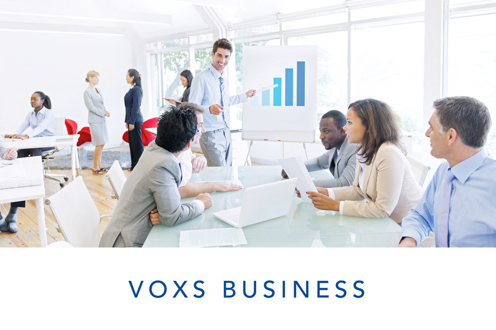 VOXS-business.jpg