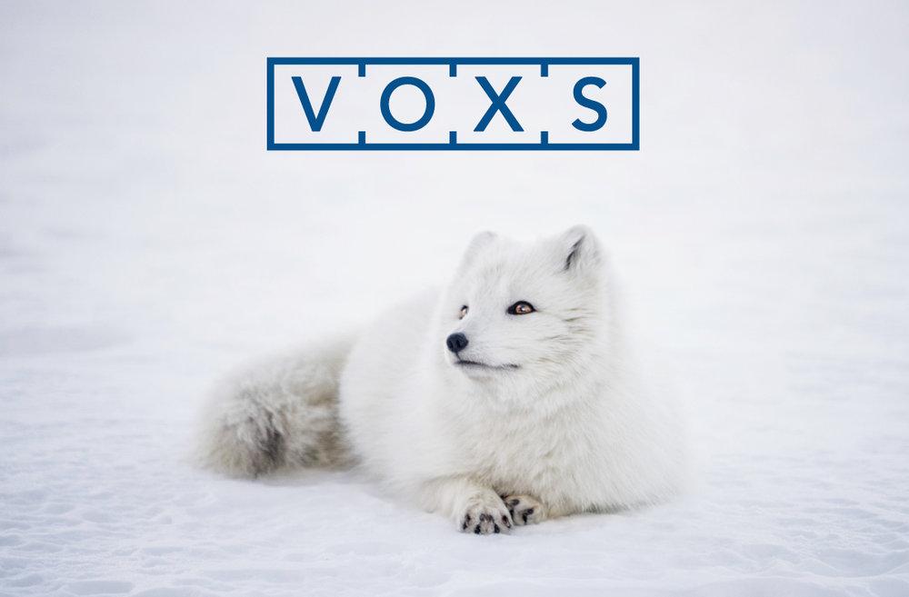 Betekenis van de naam VOXS