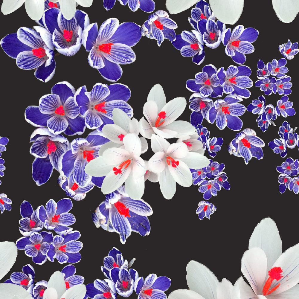 pattern16.jpg