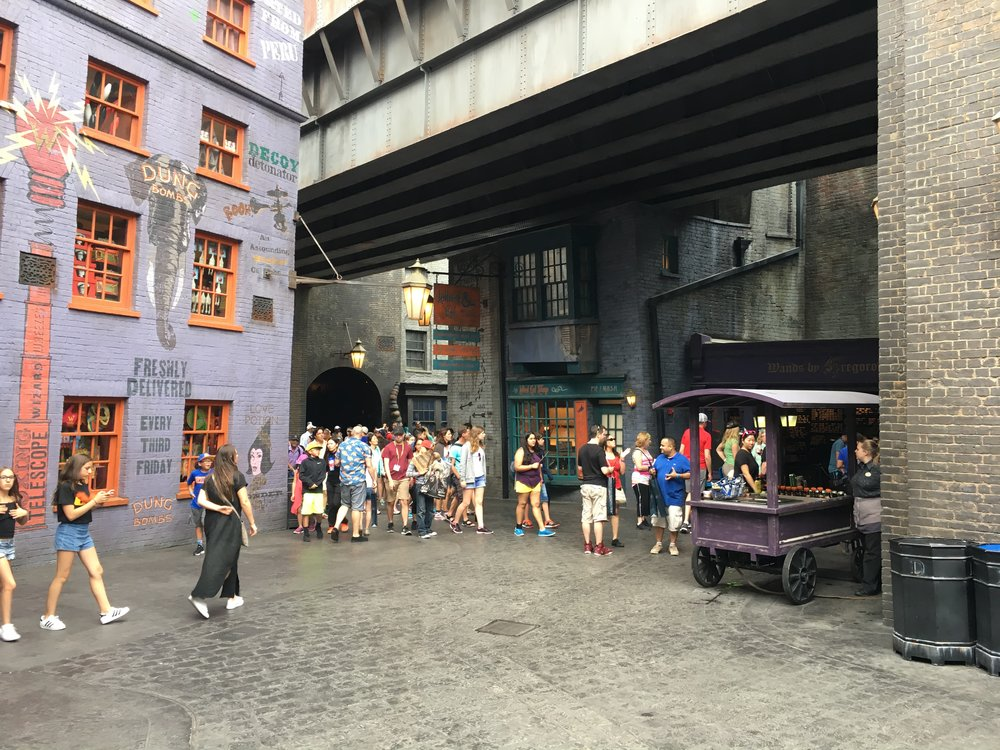 Diagon Alley / Harry Potter Land