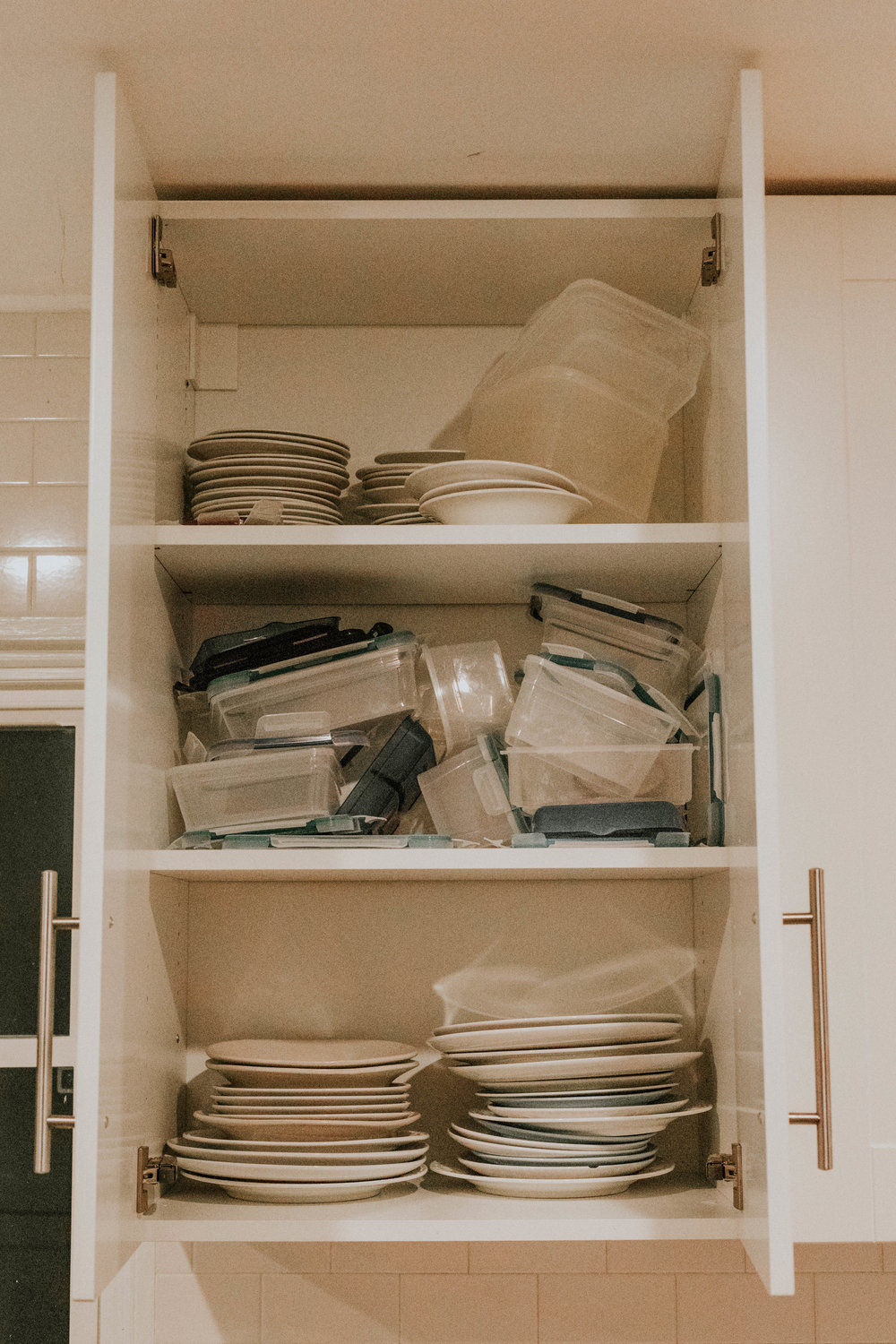 BEFORE TUPPERWARE ORGANIZATION