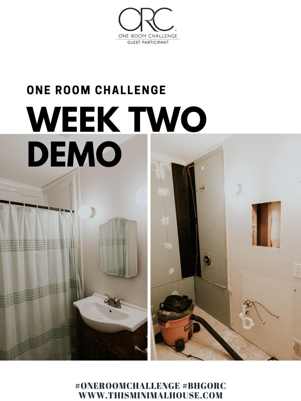 ONE ROOM CHALLENGE WEEK TWO DEMO MODE.jpg