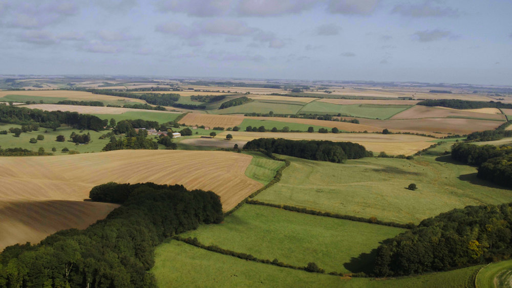 Love Lincs Wolds - Electric Egg