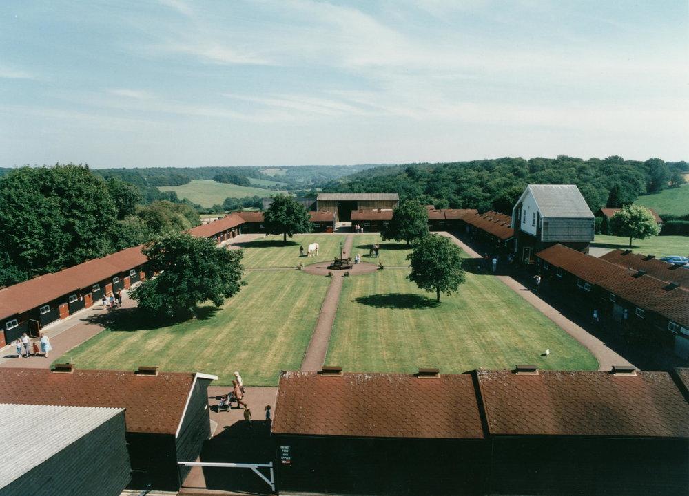 The Original Yard