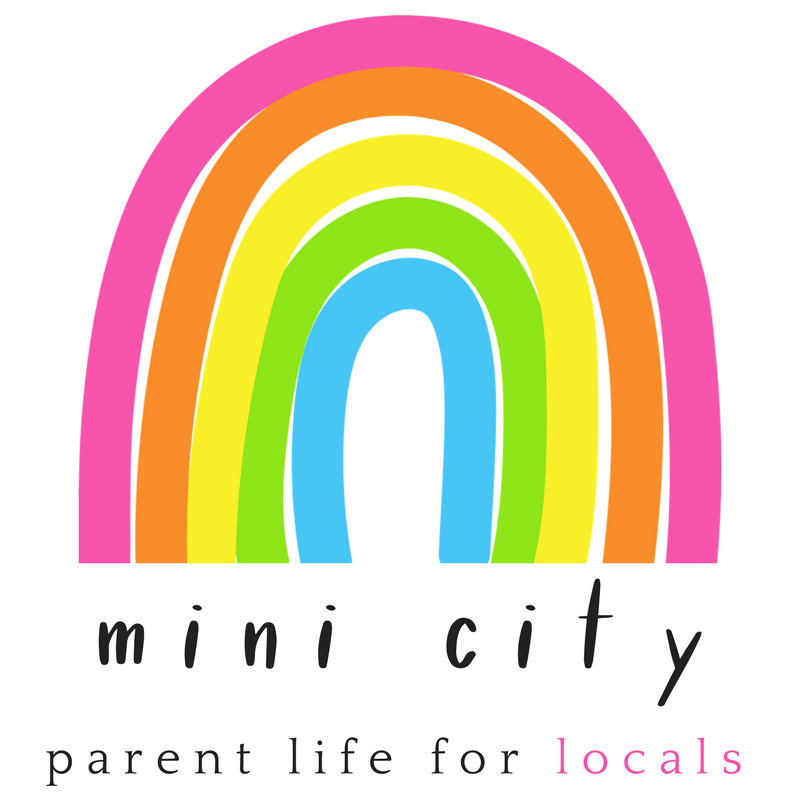 Clifton Park Blog Mini City