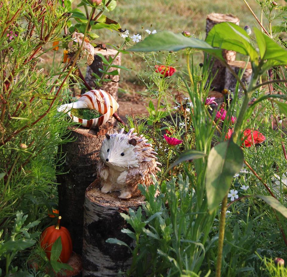 Fairy gardens to be discovered on the farm