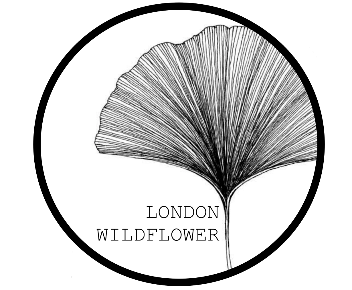 London Wildflower