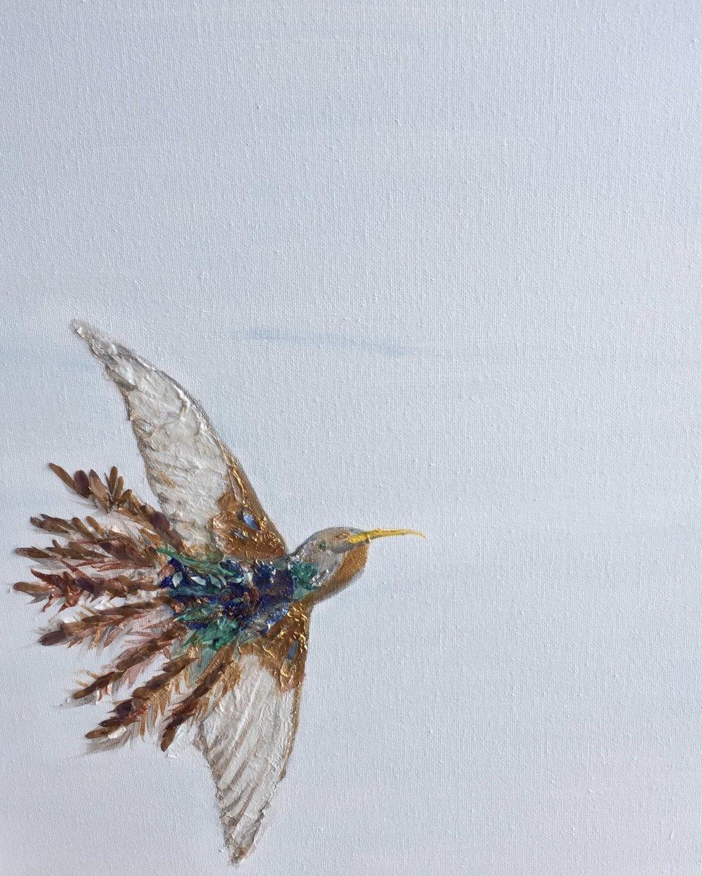 London Wildflower Hummingbird of Paradise
