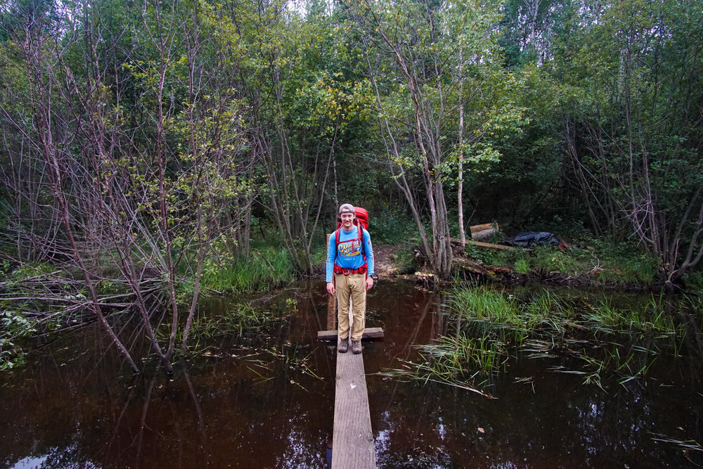 New wood bridges over beaver ponds