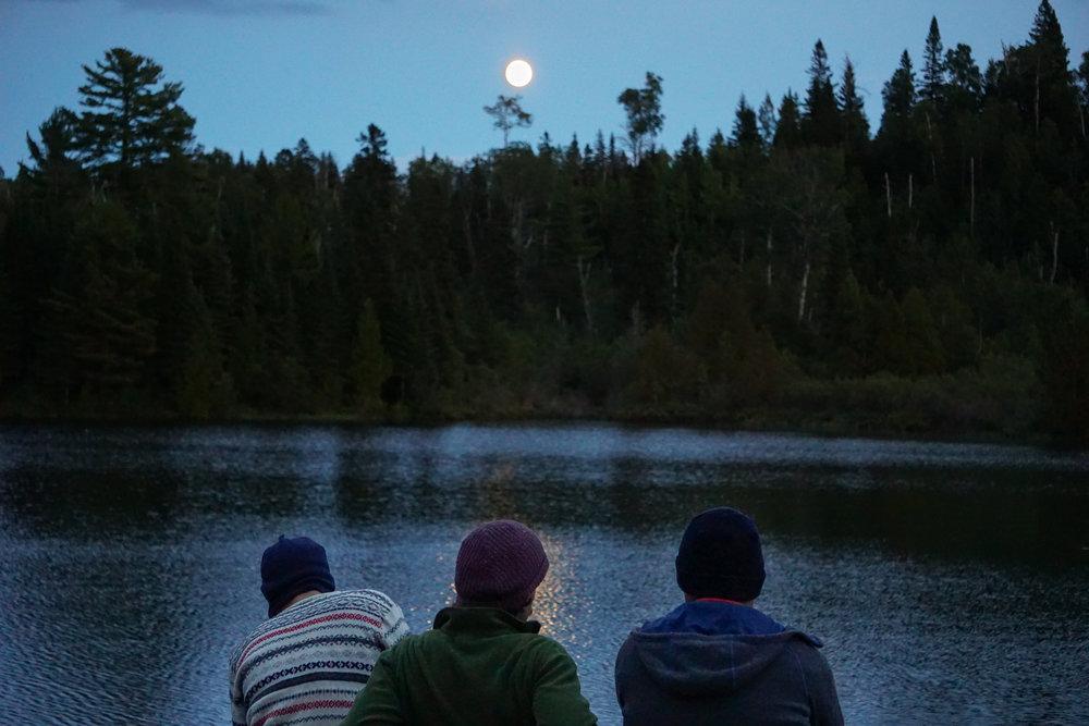 A bright moon rising up