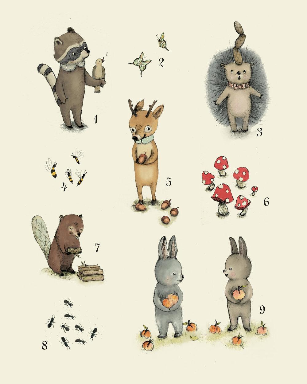 animalsnumbers.jpg
