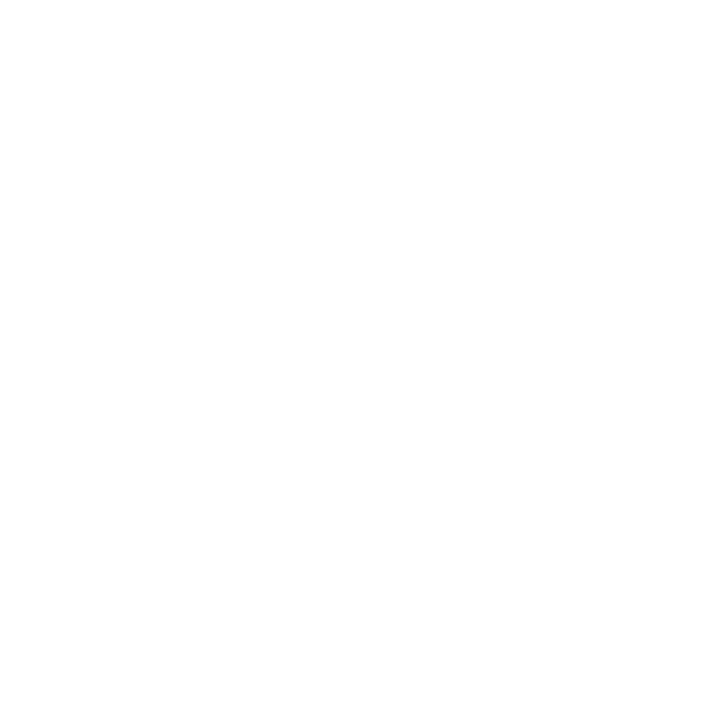 Civil Action Group — APS International