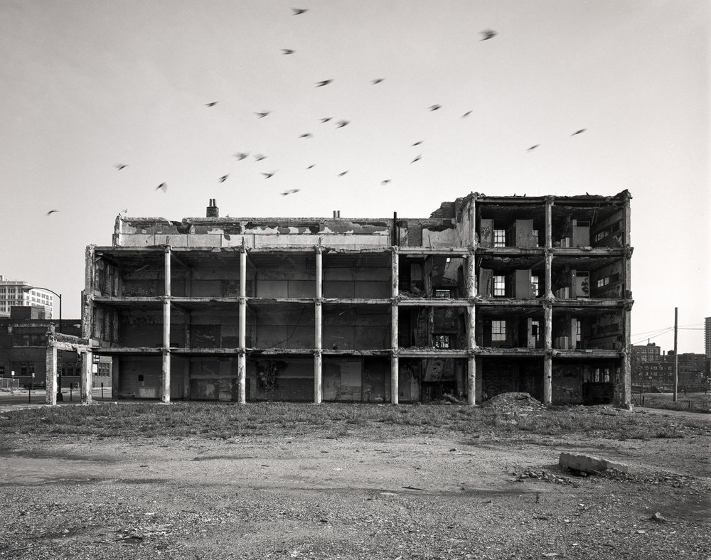 Building with Pigeons ©1981