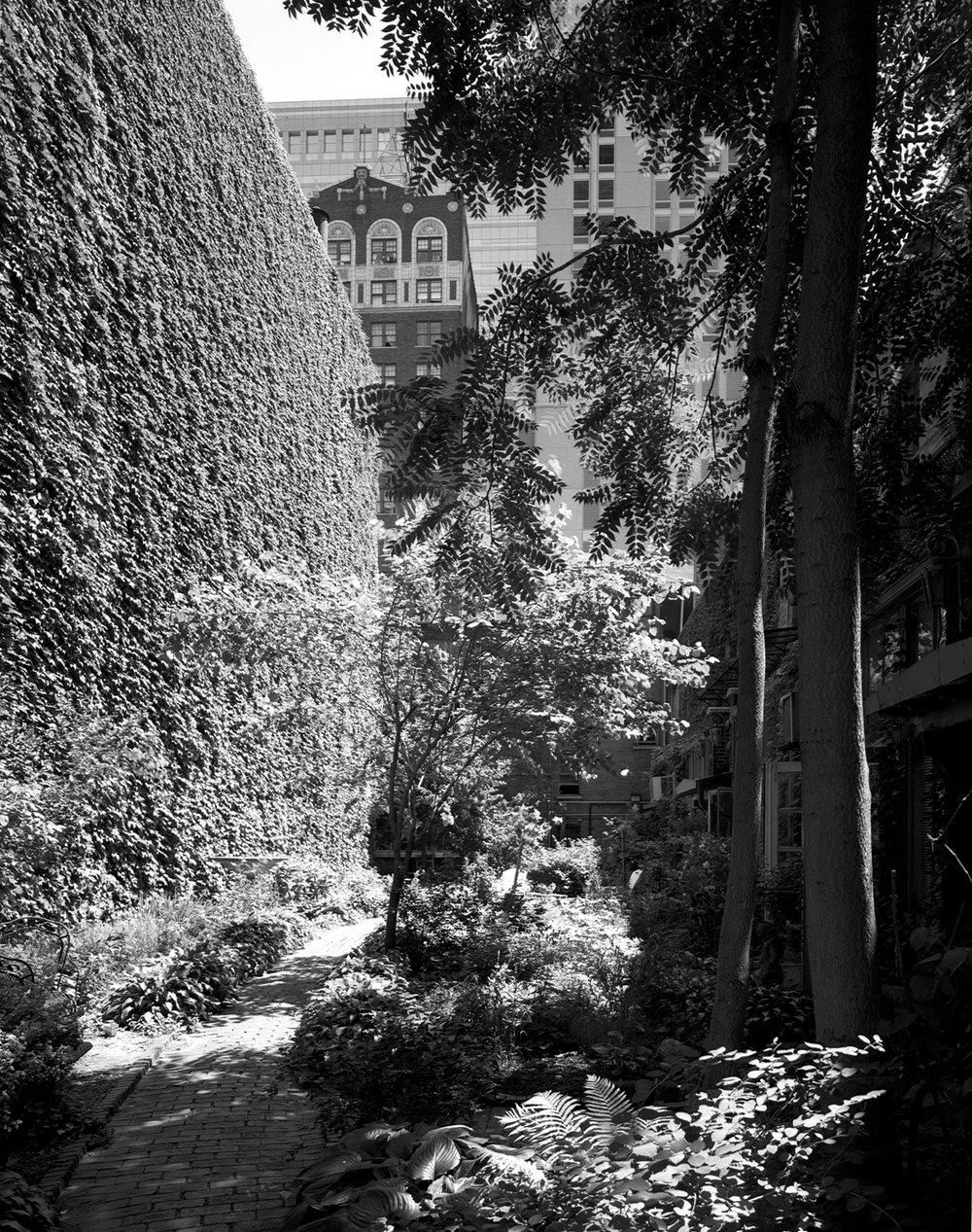 Tree Studios Courtyard 1999