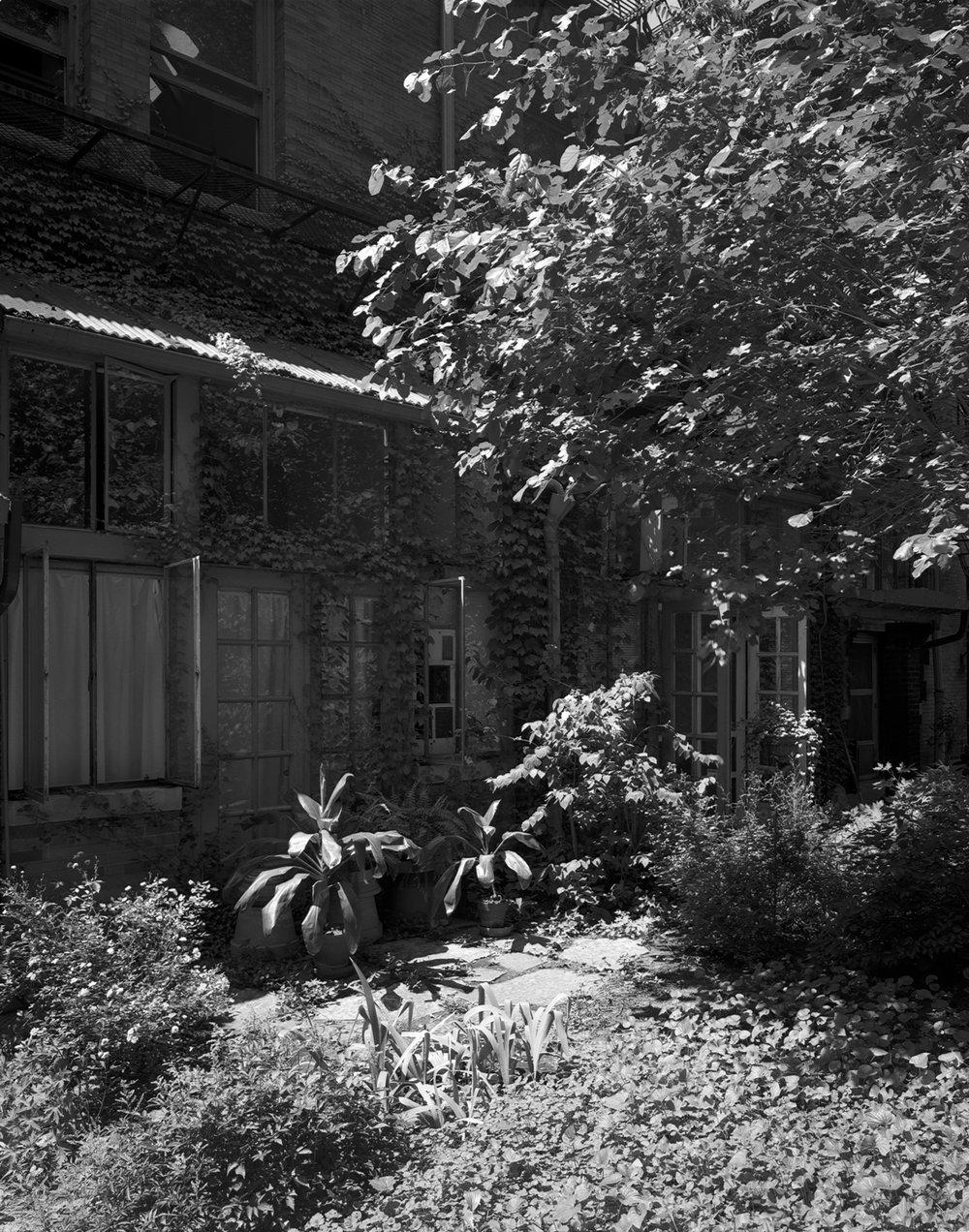 Treet Studios Cortyard windows 1999