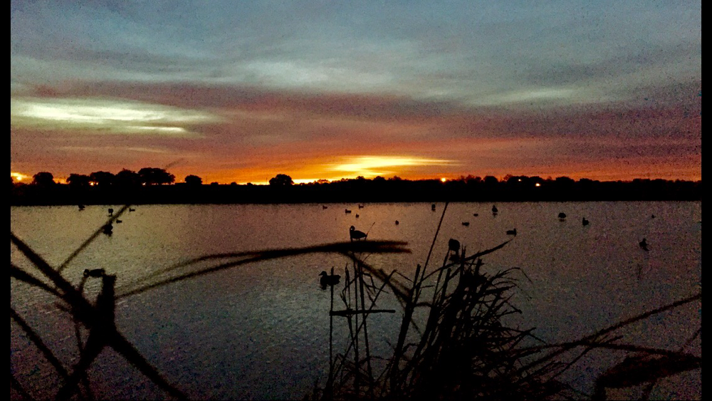 sunrise from duck blind