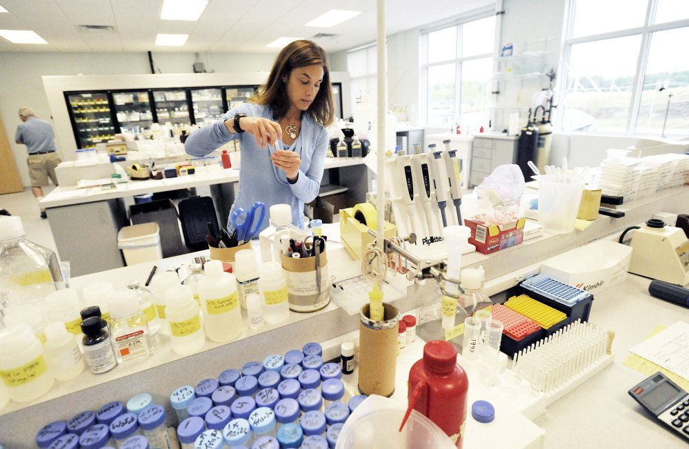 "Stacy Cimino works to fill orders at ViroStat's lab. Doug McAllister, the company's president and founder, said that becoming the provider of antibodies for new Zika testing is ""a race to be first and a race to see who has the best-quality test."" Photos by Shawn Patrick Ouellette/Staff Photographer"