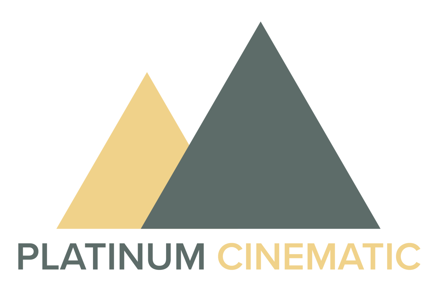 Platinum Cinematic - Movies That Sell Your Home