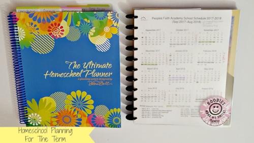 homeschool planning for the term.jpg