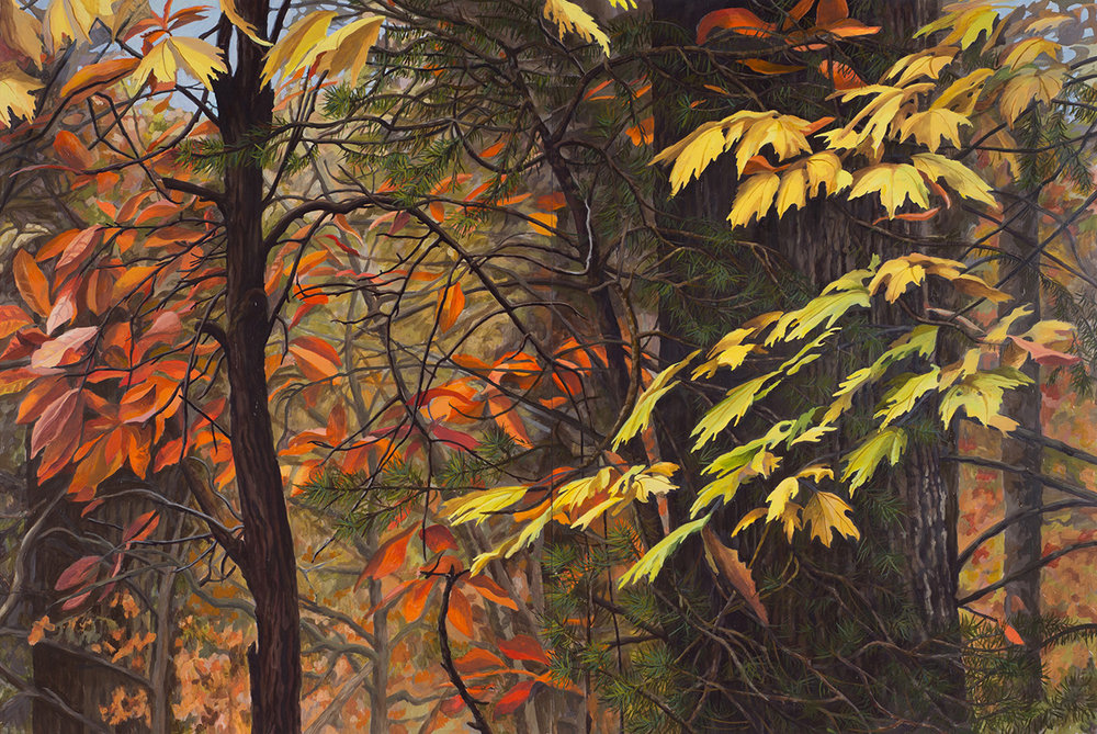 "North Carolina Woods #1: Oil on panel 42"" x 60"" 2014 SOLD"