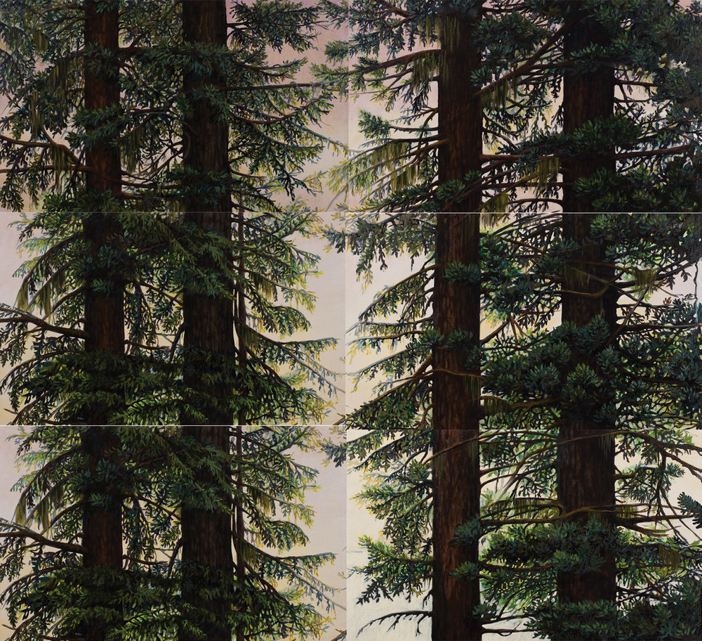 "Douglas Fir: Olympic National Forest, Washington. Oil on linen canvas over panel (six panels, 26"" x 16"" each) 48"" x 52"" 2009"