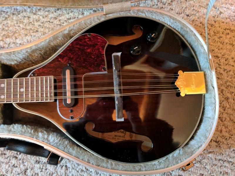 guitar (1267).jpg