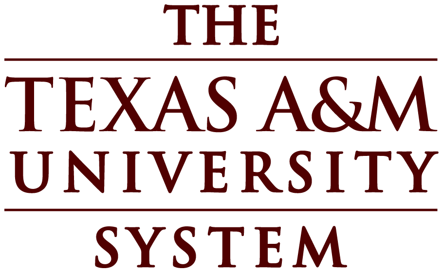 primary TAMU system.png