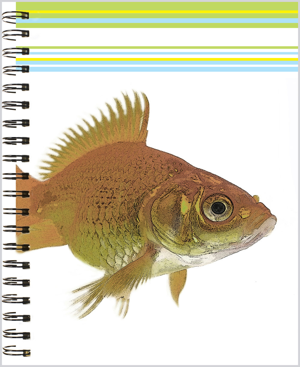 LittleNoteCard_Goldfish_Journal