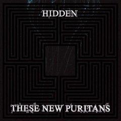 these-new-puritans-hidden.jpg