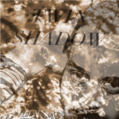 twin-shadow-forget-2010.jpg