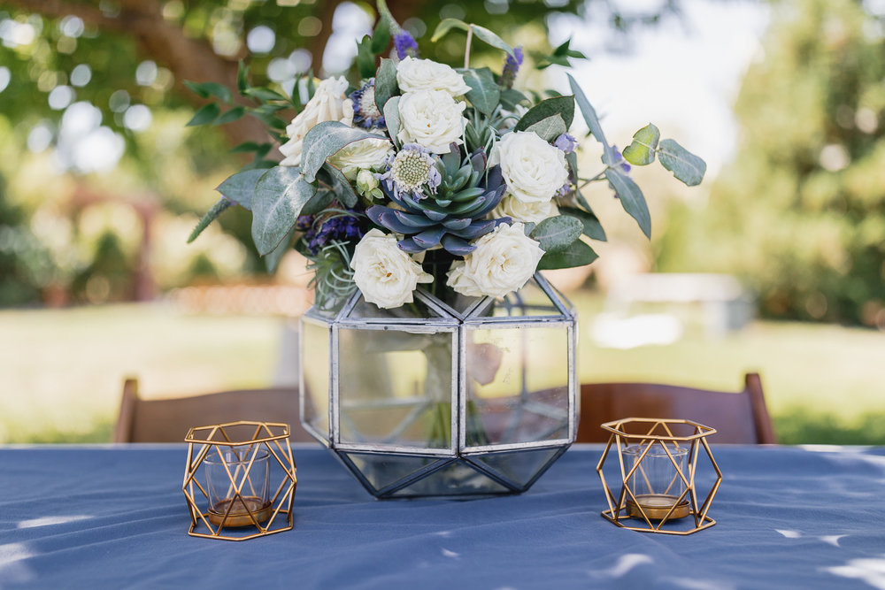 Best-Paso-Robles-California-Wedding-Photographer-167.jpg