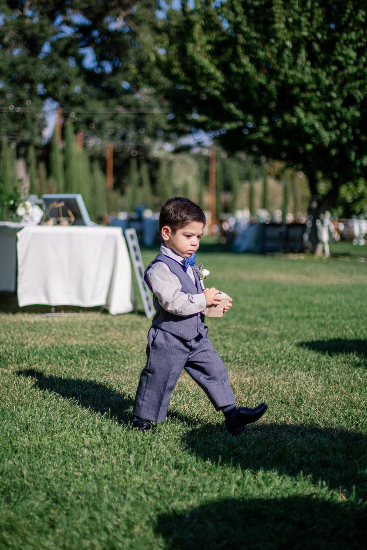 Best-Paso-Robles-California-Wedding-Photographer-182.jpg