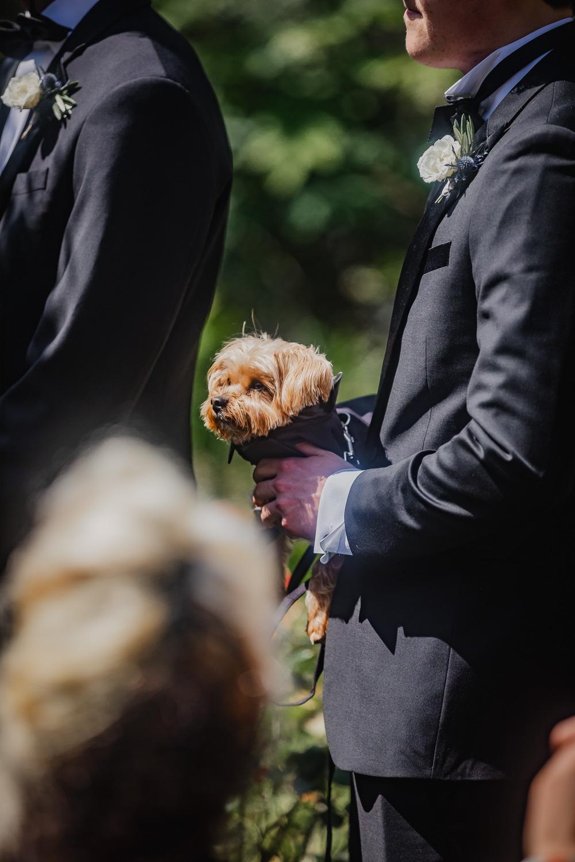 Best-Thousand-Oaks-California-Wedding-Photographer-224.jpg