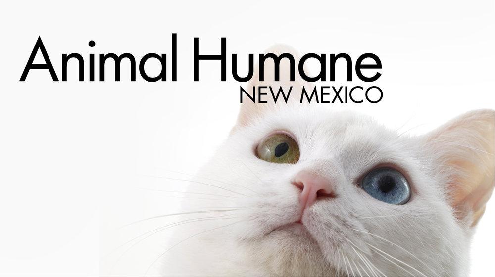 IconicNM_animalhumane-11.jpg