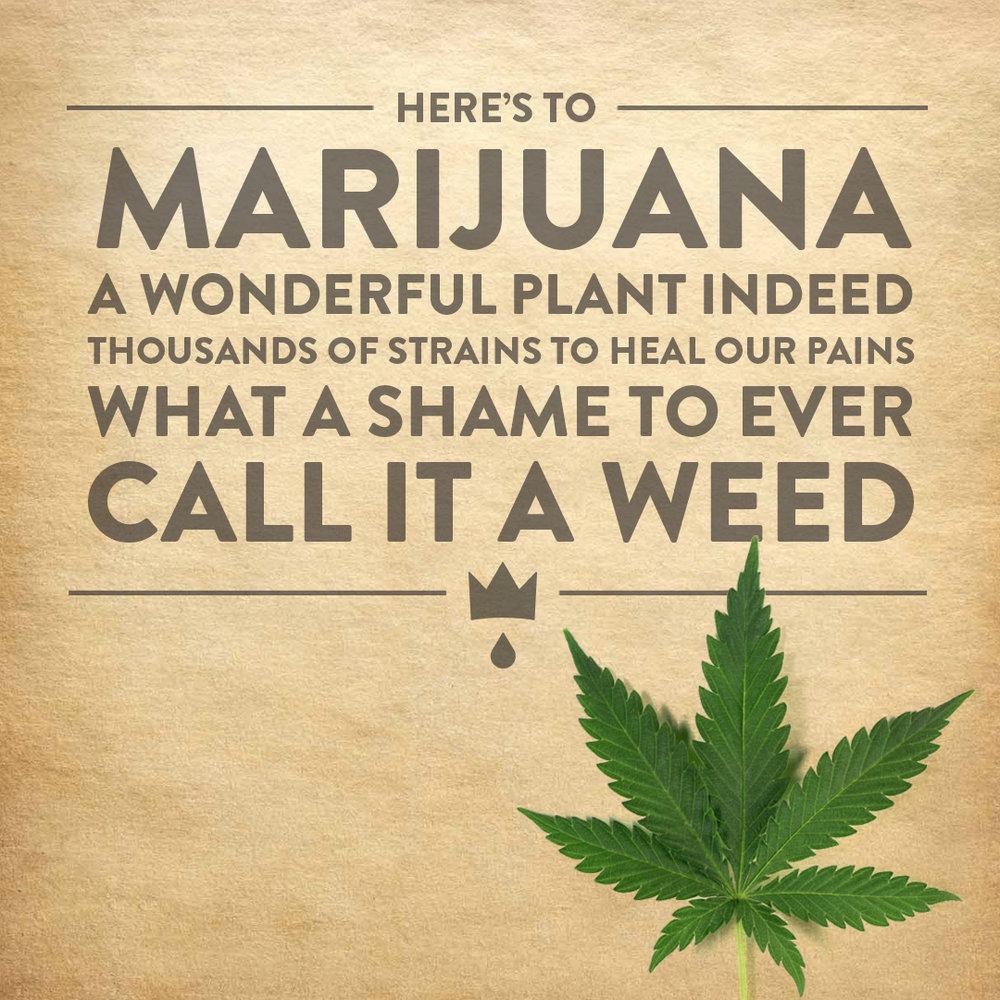 herestomarijuana.jpg