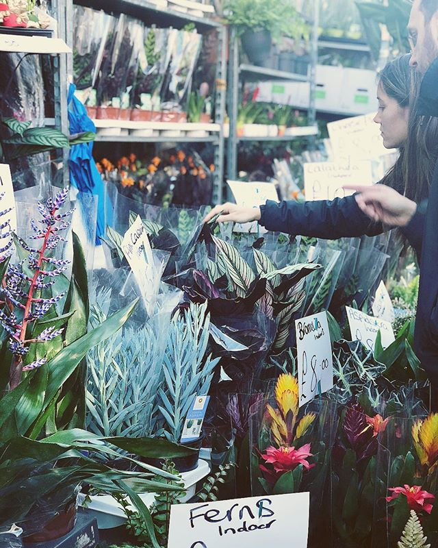 Busy busy at #columbiaroad today. Starting to feel those warmer vibes #flowers #plantlove #plantlife #market #eastlondon #londonmarket