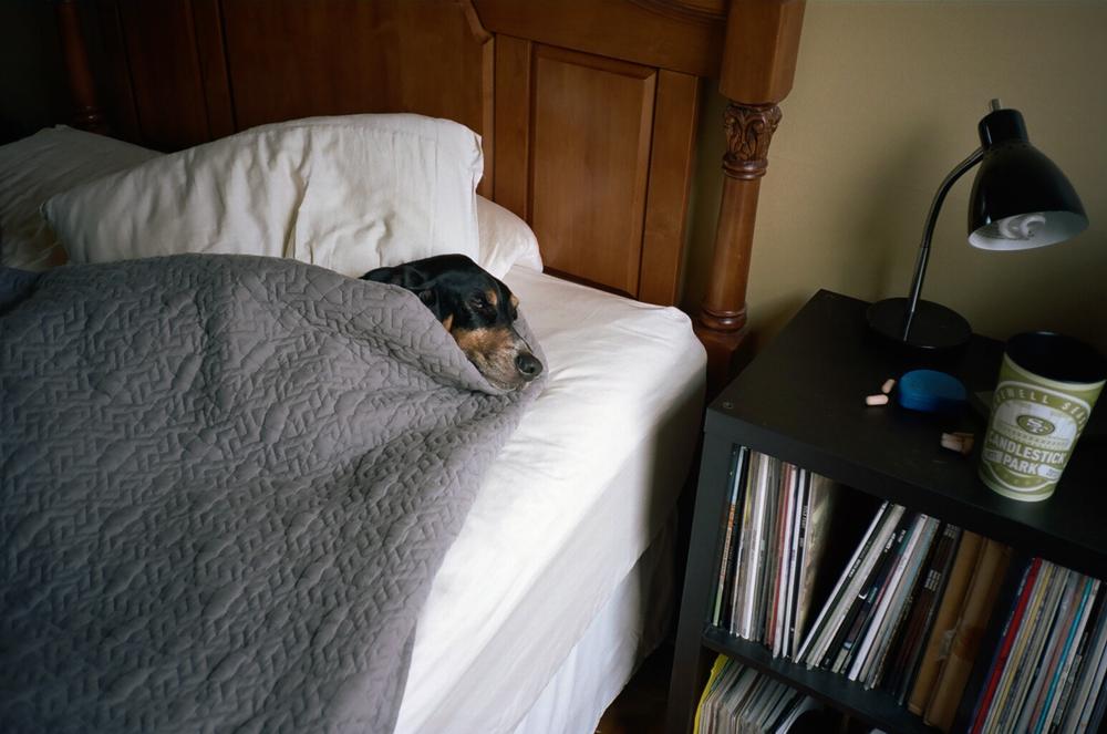 Edwin: Sleeping In