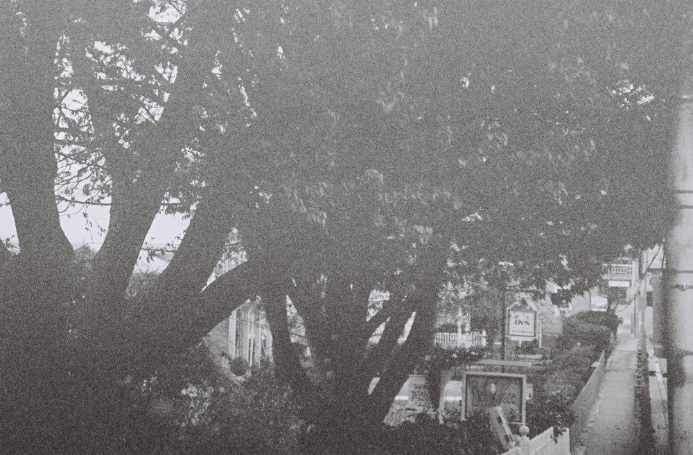 dusroom-13.jpg