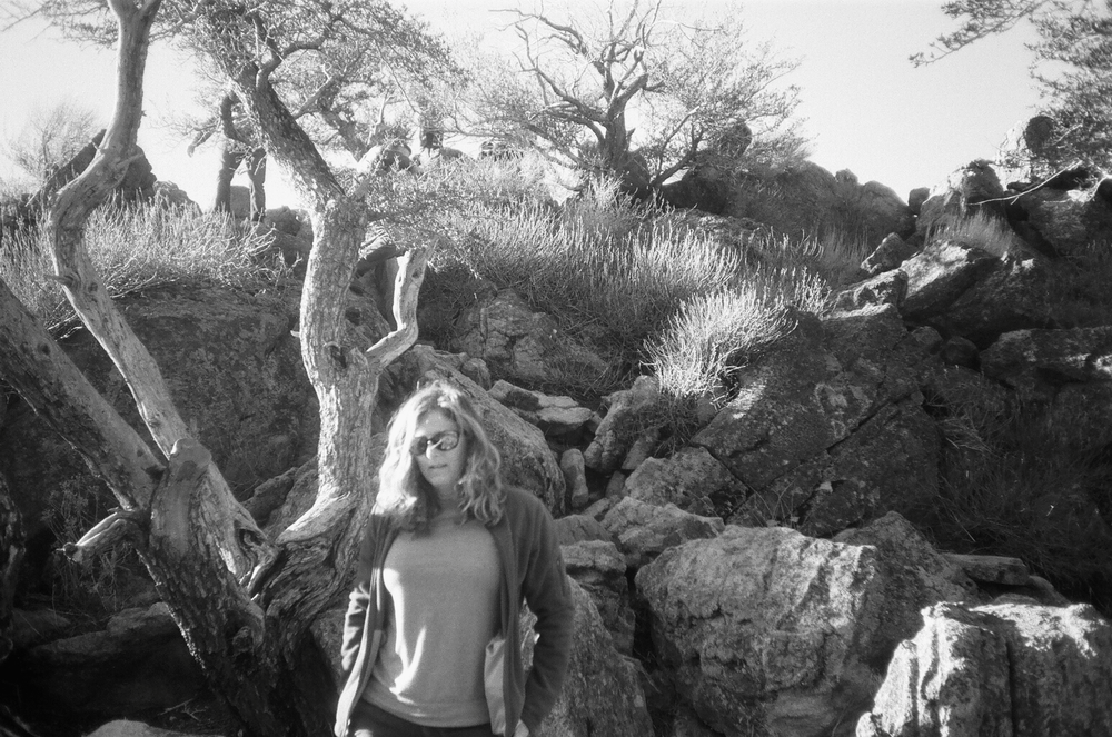 Karin Cox: Desert Cold