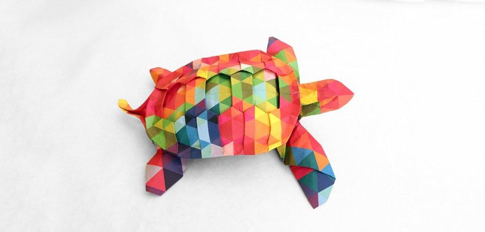 c-origami-turtle-1024x489.jpg