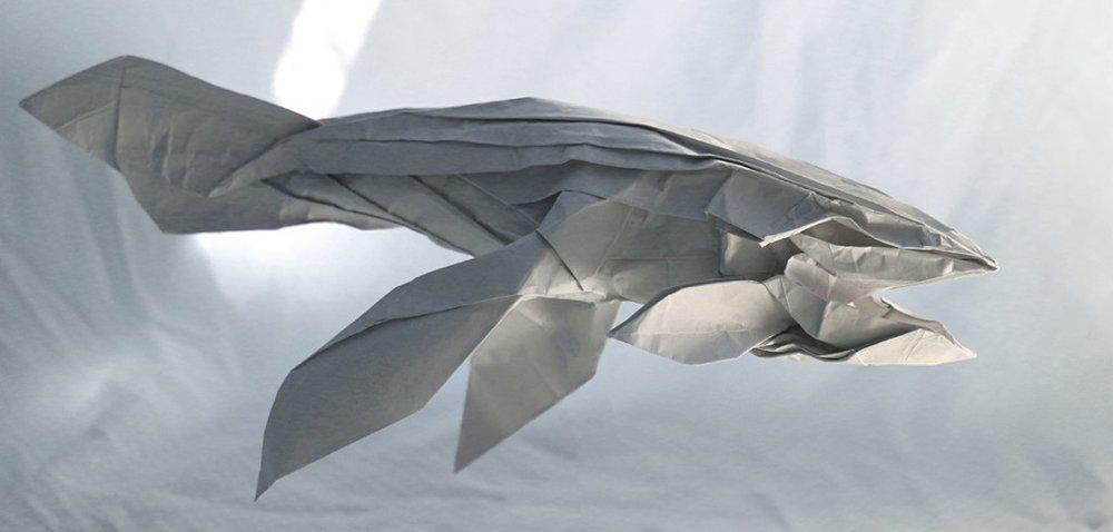 c-origami-whale-1024x489.jpg