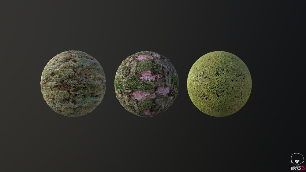 Subtropical Forest Materials (Set 1). Made using self taken photographs.