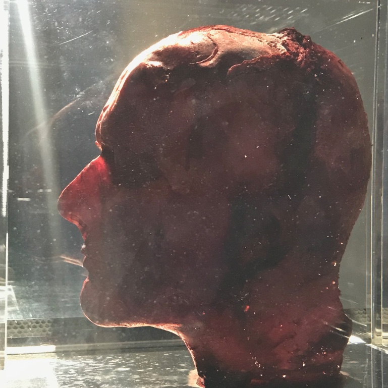 "Marc Quinn,  Self . Blood (artist's), stainless steel, Perspex and refrigeration equipment, 6'10"" × 2' × 2'."