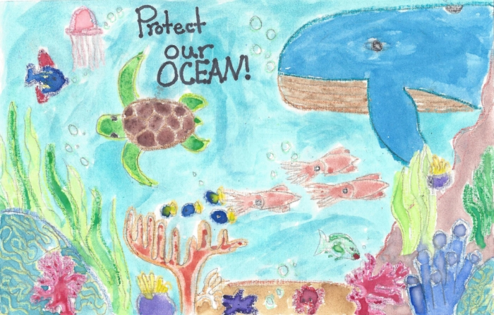 Protect Our Ocean, by Amber Boothby