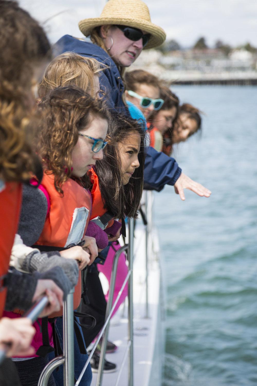 97,489 - Ocean Stewards